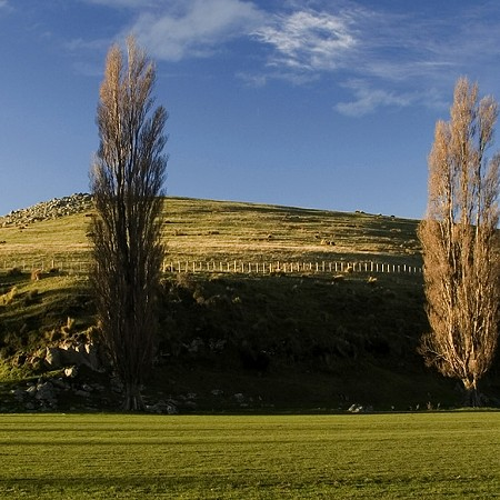 Afternoon light - Christchurch, South Island
